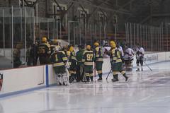 Hockey, LIU Post vs Princeton 22 (Philip Lundgren) Tags: princeton newjersey usa