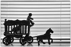 21st MoNovember 16 (cazphoto.co.uk) Tags: monovember monovember16 monochrome blackandwhite nov15 211116 panasonic lumix dmcgh3 panasonic1235mmf28lumixgxvarioasphpowerois deal kent ornament horse cage lion man circus window silhouette venetianblind windowsil
