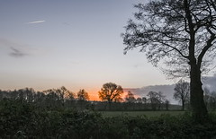 Burning tree at 7:30 AM (Jan R.Ubels) Tags: morgenrood sunrise ochtend rood vuur red fier trees boom tree