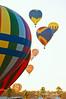 DSC_1207-copy-4-web (ms godard) Tags: hotairballoons balloonfestival foleyal d300s nikond300s debbiegodard