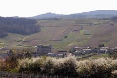 Le village de Fuissé (Chemose) Tags: spring burgundy printemps fuissé