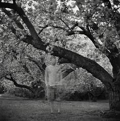 Untitled (Owen Luther) Tags: longexposure trees blackandwhite white selfportrait black 6x6 film analog mediumformat dark square monochromatic hasselblad neopan 100 acros hasselblad500cm fourminutes neutraldensity