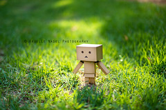 On Days Like This (Arielle.Nadel) Tags: summer grass walk cardboard yotsuba danbo toyphotography 35100 revoltech  100daysofsummer danboard  canon5dmarkiii bunnyrel ariellenadelphotography