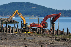 2013-07-24 Custom Plywood Mill Site (03) (1024x680) (-jon) Tags: mill beach waterfront shoreline cleanup demolition doe caterpillar restoration pugetsound coop pilings lowtide sanjuanislands anacortes washingtonstate backhoe excavator skagitcounty hazardouswaste trackhoe fidalgoisland departmentofecology anacortesveneer fidalgobay hitachiexcavator tommythompsontrail creoste nikonafs70300mmf4556vrii customplywoodmill pugetsoundinitiative fidalgolumberboxcompany publisherspaperco orionmarinecontractors a266122photographyproduction
