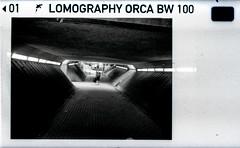 underpass (pho-Tony) Tags: auto camera blackandwhite bw white black monochrome miniature lomography pentax 110 killer edge whale 100 orca pocket rodinal markings instamatic cartridge pentaxauto110 edgemarkings lomographyorcabw100 lomographyorca