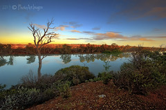 Dawn reflections (PhotoArt Images) Tags: sunrise dawn australia southaustralia murrayriver rivermurray nildottie photoartimages