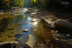 The River's First Light (wyojones) Tags: autumn trees fall water rock river vermont rapids lensflare coveredbridge np clearwater rockriver williamsville morninglite windhamcounty wyojones williamsvillebridge