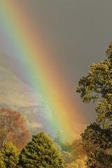Autumn Rainbow (themadbirdlady) Tags: rainbow stirlinguniversity