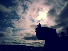 264 | (marmeladenboot) Tags: greatbritain travel sea england sky sun beach sunshine strand seaside meer heaven cornwall adventure unterwegs sonne ontheroad chill reise adventuring lavieenrose ammeer pentewan lebensgefhl senseofbeing marmeladenboot