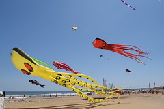 Kites in VA Beach
