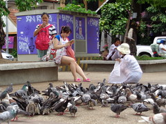 Thapae Gate, Pidgeons and Ladies (rodeochiangmai) Tags: ladies birds thailand