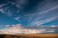 Late Spring, Early Evening on the High Plains I (doug_r) Tags: field landscape colorado denver towerroad panasonicgf1 20150521 2015dtrosenoff p10505173 panasonic1235f28l