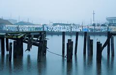 (gordon gekkoh) Tags: sanfrancisco graffiti yu amc zo enik tvc task 246 doer ceno ehc seps swerv zombra amck