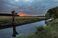 Outcast (Leigh Cousins RAW) Tags: outcast richmondpark stream lake water sunset evening storm firstlight tree adandoned moody foilage landscape lonely reflection surrey