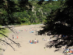 Sandy Beach (dale52.5) Tags: sandybeach acadia maine vacation outdoor beach landscape