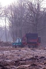 ckuchem-6955 (christine_kuchem) Tags: abholzung herbst holzeinschlag holzindustrie maschinen wald waldwirtschaft wirtschaft holzwirtschaft holzgewinnung holz baumstmme bume geschft gewinn ertrag naturschutz spuren waldmaschinen reifenspuren verdichtet bodenverdichtung boden belastung markierung kreuz