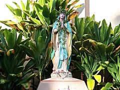 1 Garden Beautiful (Robert Cowlishaw-Mertonian) Tags: ourlady statue mertonian faith robertcowlishaw canon powershot g7x mark ii canonpowershotg7xmarkii maui2016 hawaii maui mothermary awe beautiful beauty ineffable colors green