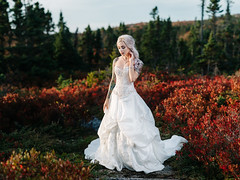 Kelly (Tim Lingley) Tags: wedding bride groom coastal halifax novascotia autumn fall red sunset brenizer 85mm lens portrait people love couple