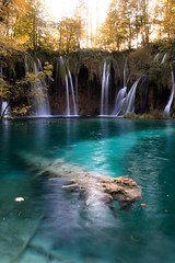 Sunken Tree (stefan.el77) Tags: plitvice waterfall autumn croatia plitvicelakesnationalpark nationalpark beautifulearth hiking travel lakes beauty longexposure landscapephotography immerseinnature clearwater leaves water turquoise tree sunken underwater