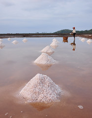 Salt field in Kampot, Cambodia (phuong.sg@gmail.com) Tags: afternoon agriculture asian bicycles black blue cambodia climate cloud cone conical crop dawn district field flat green harvesting hat heat kampot labor men morning overcast people province purple reflection salt sea sky stack style sun sunset tropical vietnam water white woman work yellow