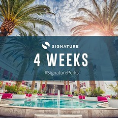 4 more weeks and the team at Signature Inc. will be in Vegas! #SignaturePerks (signatureincNJ) Tags: signatureincnet signature inc reviews cherry hill new jersey