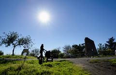 (massimopisani1972) Tags: parco degli acquedotti roma rome italia italy massimopisani massimo pisani ombre carozzino mamma bambino shadows buggy mother child nikon d610 20300