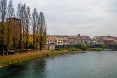 DSC_2178 (marcog91) Tags: urban verona italy river architecture outdoor around world discover amatorial italia city veneto romeo giulietta love