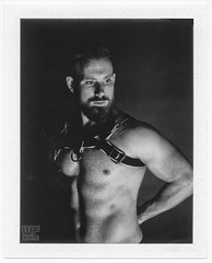 Polaroid    (new website online!  check link below) (WF portraits) Tags: cze man male portrait studio polaroid fp3000b blackandwhite naked nude chest hairy shaven beard blonde muscles fitness gym harness leather 600se