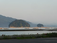 Oyster farms (Stop carbon pollution) Tags: japan  touhoku  iwateken  honshuu