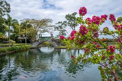 Palais royal de l'eau (dimz2607) Tags: palais jardin source fontaine royal puri agung karangasem bali