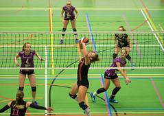 1B260876 (roel.ubels) Tags: vv utrecht eurosped galgewaard volleybal volleyball 18 finale nationale beker