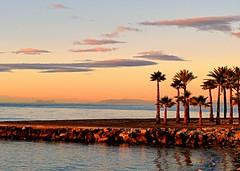 La bajamar (camus agp) Tags: espaa mareas bajamar mediterraneo palmeras