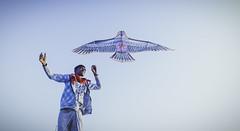 Kite on Meghna River (Shahriar (Phone Clicker :P)) Tags: mobilography camping campsite meghna araihazar
