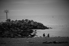 Rainy Day Beachcombers (sarahellenspringer) Tags: 7dwf beach weather cold rocks jetty