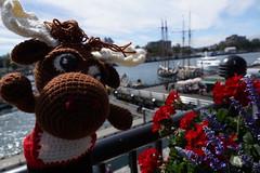 DSC00472 (The Crochet Crowd) Tags: crochetmoose amigurumi moose crochet doll alaska britishcolumbia thecrochetcrowd michaelsellick jeannesteinhilber danielzondervan crochetcruise mooseontheloose