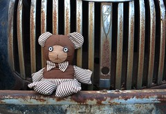 Rusty Grilled Bear (timmerschester) Tags: grill old vintage bear teddy truck rusty farmland country michigan spaldingrbear