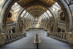 London Natural history museum Main hall (odin's_raven) Tags: uk england building london history museum architecture digital photoshop francis photography hall photo nikon europe chelsea angle natural britain south united main capital great central wide victorian kingdom wideangle photograph german processing gb alfred kensington nikkor romanesque raven naturalhistorymuseum renaissance hdr waterhouse postprocessing photomatix alfredwaterhouse 1424 odins fowke d700 germanromanesque francisfowke 1424mm odinsraven