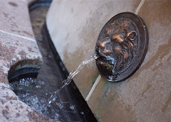 Spitting Lion (Mondmann) Tags: usa art water fountain america washingtondc unitedstates lion georgetown spitting mondmann spittinglion fujifilmx100s