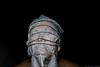 3La necesidad de la muerte (Jucalo Photo) Tags: portrait self canon colombia bogotá autoretrato camilo julián alarcón gordillo strobits surealismo selprtrait jucalo jucalovisual camilojucalo camilojucaloalarcon