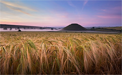 Pre Dawn Silbury Hill (Chris Beard - Images) Tags: sunrise corn july farmland fields crops silburyhill mists wheatfield siummer landscapewiltshire