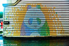 Panda Mosaic - Ottawa 06 13 (Mikey G Ottawa) Tags: street city ontario canada stencil paint panda mosaic ottawa mikeygottawa anastasiaboguslavskaya