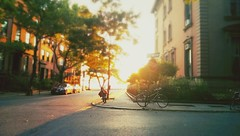 Coating the world in gold. (Linh H. Nguyen) Tags: street light sunset sun newyork blur brooklyn golden bicycles dreamy heights tilt m7 snapseed flickrandroidapp:filter=none htcone