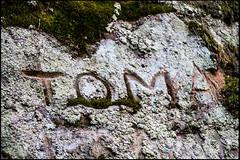 20130809-56 (sulamith.sallmann) Tags: signs abstract texture stone typography europa stones struktur structure latvia steine typo schrift stein surfaces abstrakt zeichen lettland latvija typografie oberflche inschrift texturen textur lva vidzeme ligat sulamithsallmann lgatne vivland