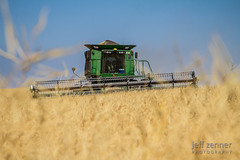 Canola Harvest (jeffzenner) Tags: canola seed biofuel oil 9770 9770sts agriculture combine grain harvest johndeere ag auger contour deere hill image john photo photography stock sts thresh tractor unload unloading