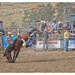 Gresford Rodeo 2013 #3
