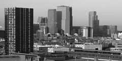 View on midtown The Hague, seen from downtown (davidvankeulen) Tags: city skyline europe denhaag stadt highrise turm centrum thehague ville stad urbanlandscape hochhaus laak hoogbouw stadsdeelcentrum urbanfield davidvankeulen davidcvankeulen urbandc stadsdeellaak metropoolrotterdamdenhaag davidvankeulennl metropolitanregionrotterdamthehague boroughlaak