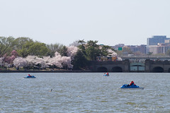 20150413-0011 (Drackemoor) Tags: trip vacation usa canada color canon photography washingtondc us photo photos capital 7d 70200 ef allrightsreserved mincho 70200mm ef70200mm canonef70200mmf40lusm minchokrastev ef70200mmf4lusm krustev krastev redleafstudio minchokrustev