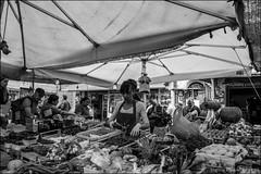 S 098 24 04 2015 (marcos 1950) Tags: street blackandwhite roma mercato biancoenero campodefiori scattidistrada