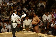 日馬富士 画像33
