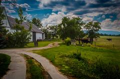 Countryside (alex.salt) Tags: czechrepublic eurotrip2015 clouds landscape nature outdoor public pentaxk5 smcpentaxda1855mmf3556alwr 35mm